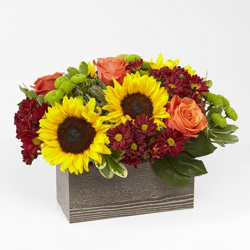 Happy Harvest Garden from Richardson's Flowers in Medford, NJ