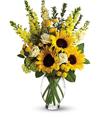 Here Comes The Sun by Teleflora from Richardson's Flowers in Medford, NJ