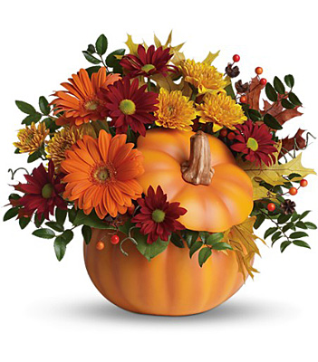 Teleflora's Country Pumpkin from Richardson's Flowers in Medford, NJ