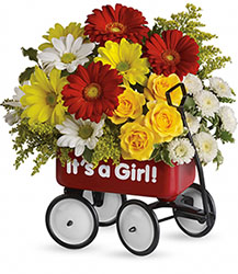 Baby's Wow Wagon - Girl from Richardson's Flowers in Medford, NJ